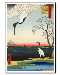 Hiroshige Kawashima