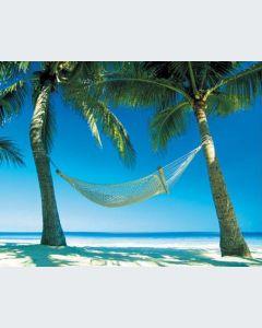 Island Paradise Gran Formato