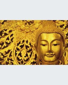 Buddha Gran Formato